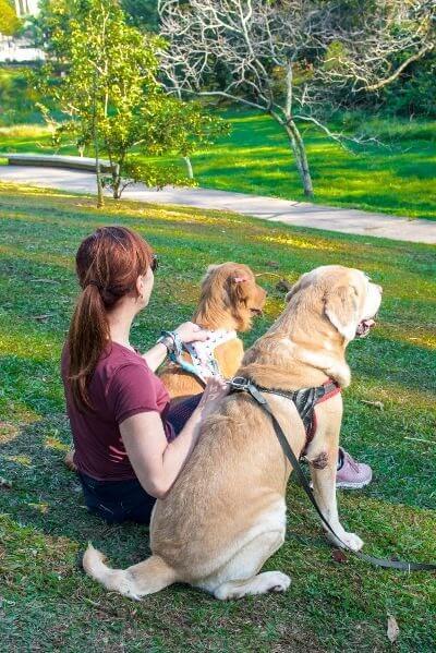 virginia com cachorros no parque