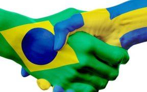 aperto de mão com bandeiras das suecia e brasil