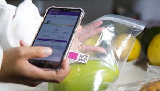 sensor de maturacao de frutas desenvolvido pela embrapa