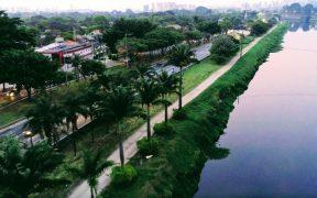 parque estadual pomar urbano na marginal pinheiros credito da foto sima