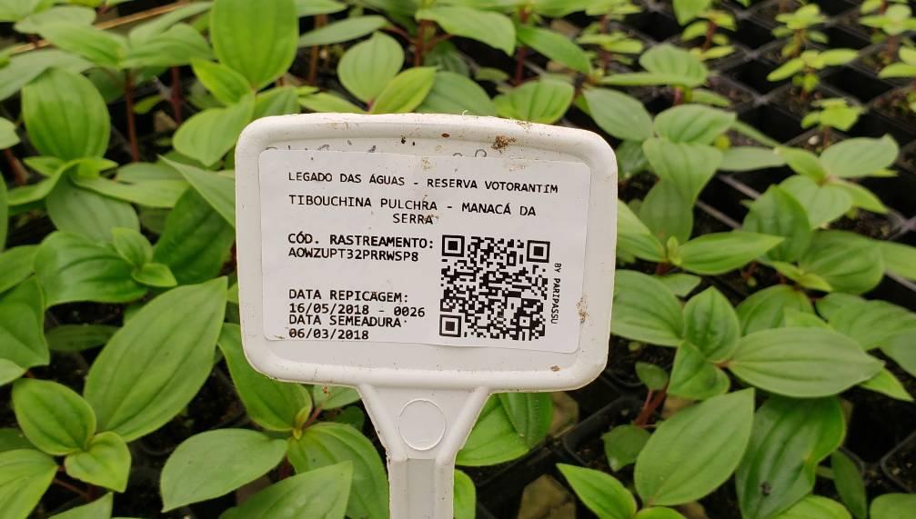 rastreabilidade de plantas no legado das aguas