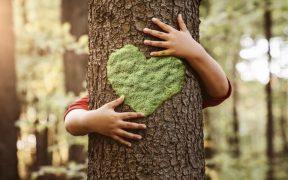 sustentabilidade marcas