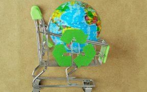 estudo ibm mostra relação entre consumidor e sustentabilidade
